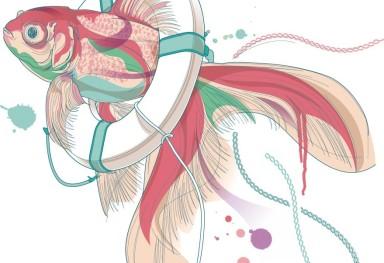 Goldfish 金魚挿絵