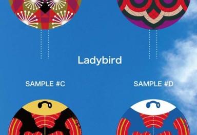 Ladybird Eyeball 凧のイラスト (テントウ虫/目玉)